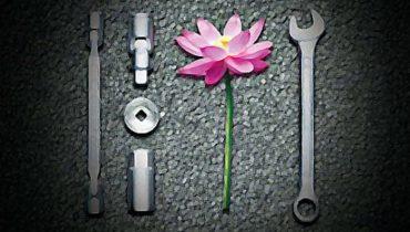 Zen and the Art of Innovation Maintenance