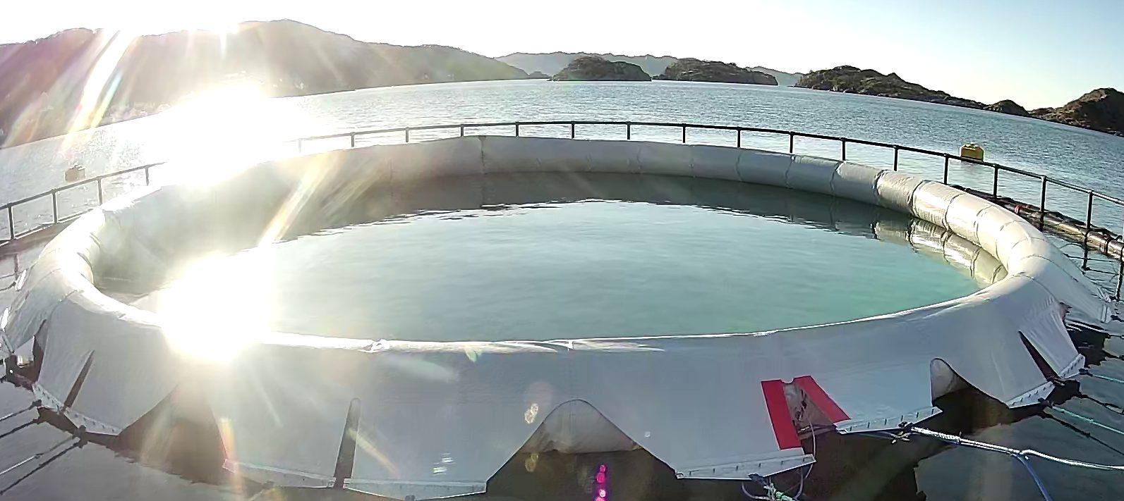 Prototype af det lukkede fiskebur Starfish, hvor SOLIDWORKS Flow Simulation er anvendt